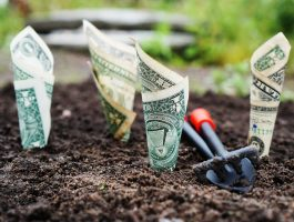 Is The Tech Nonprofit Business Model Sustainable?